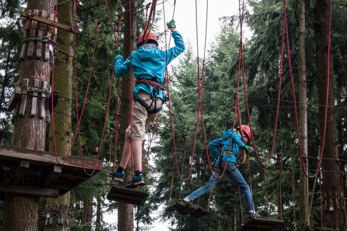 Mosel Adventure Forest Kletterwald Gazellen