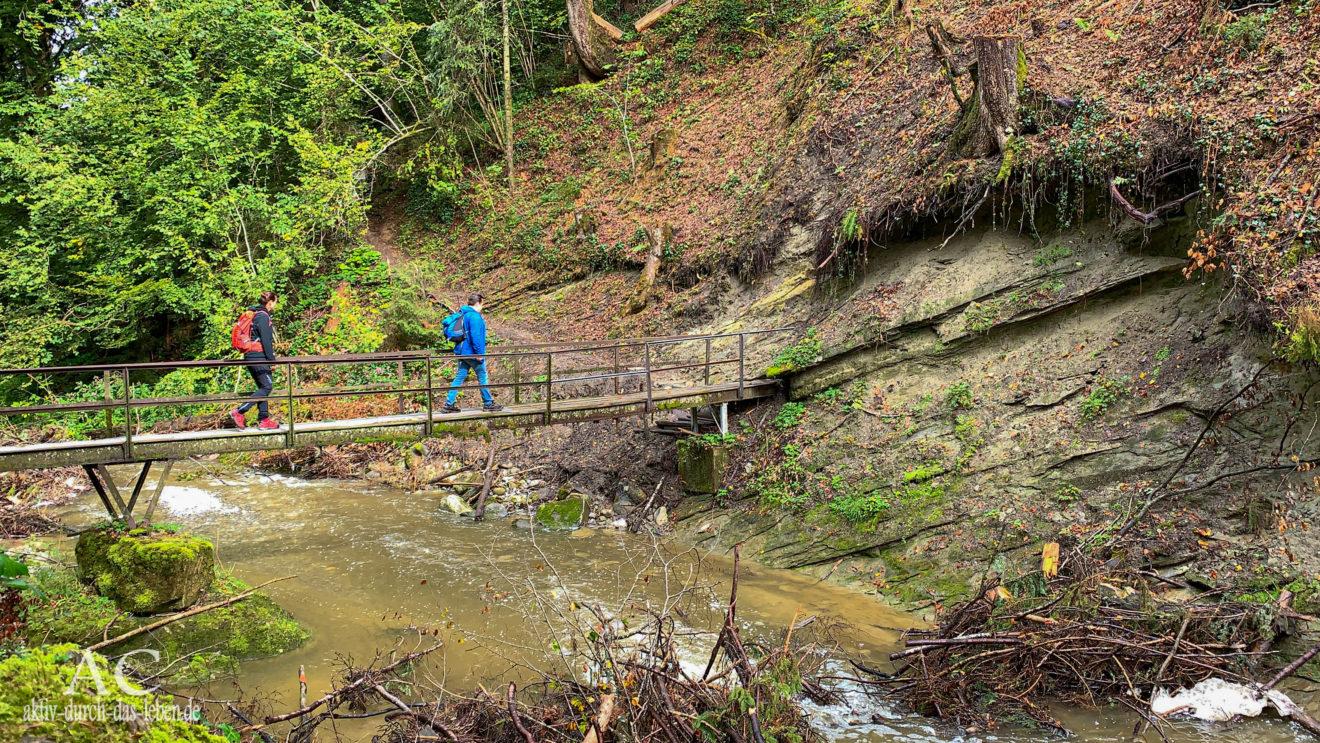 Brücke Hausbachklamm