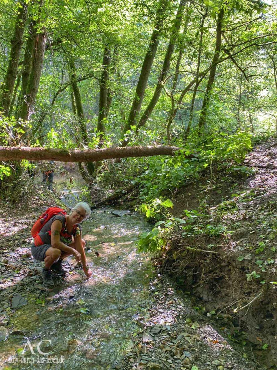 Wandern in der Vulkaneifel Lieserpfad Illgenbach